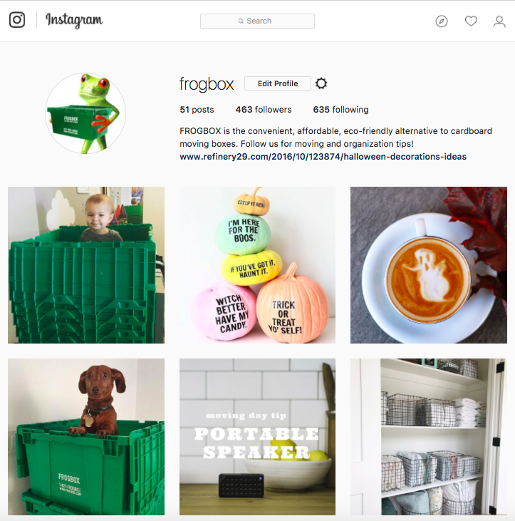 FROGBOX | Larissa Dundon &co. | Social Media