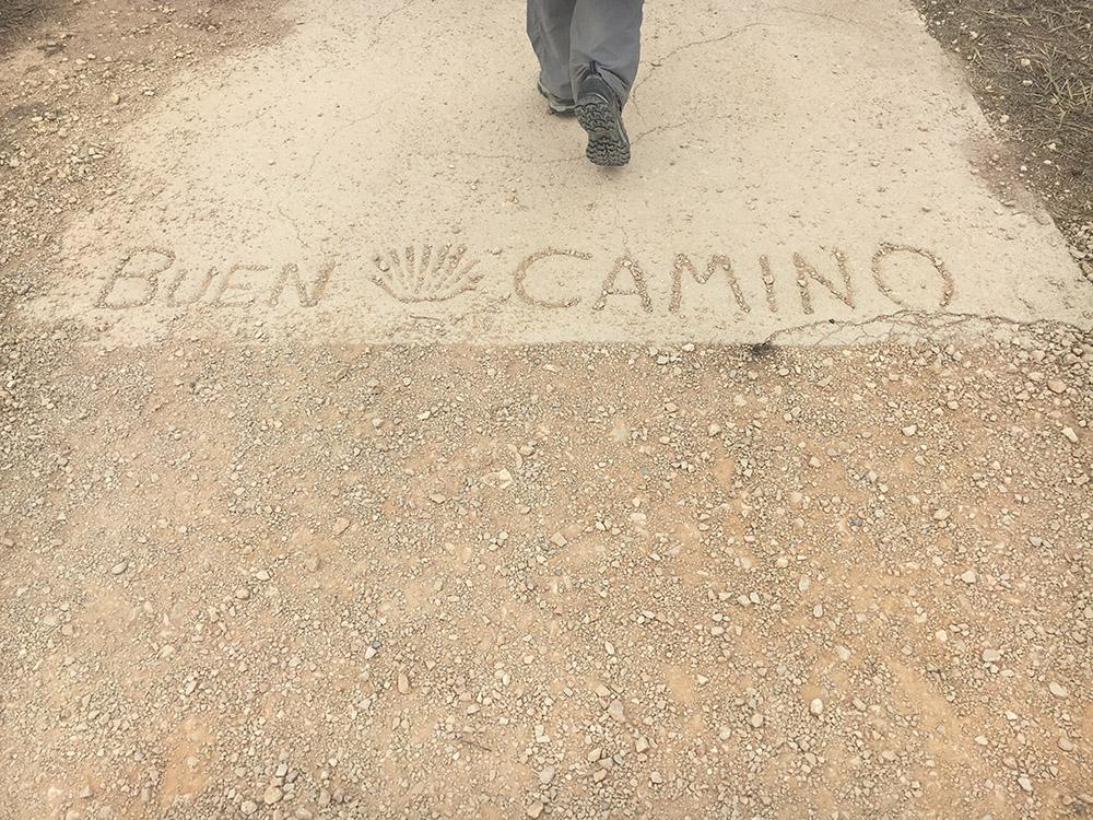Camino6Sep1.jpg