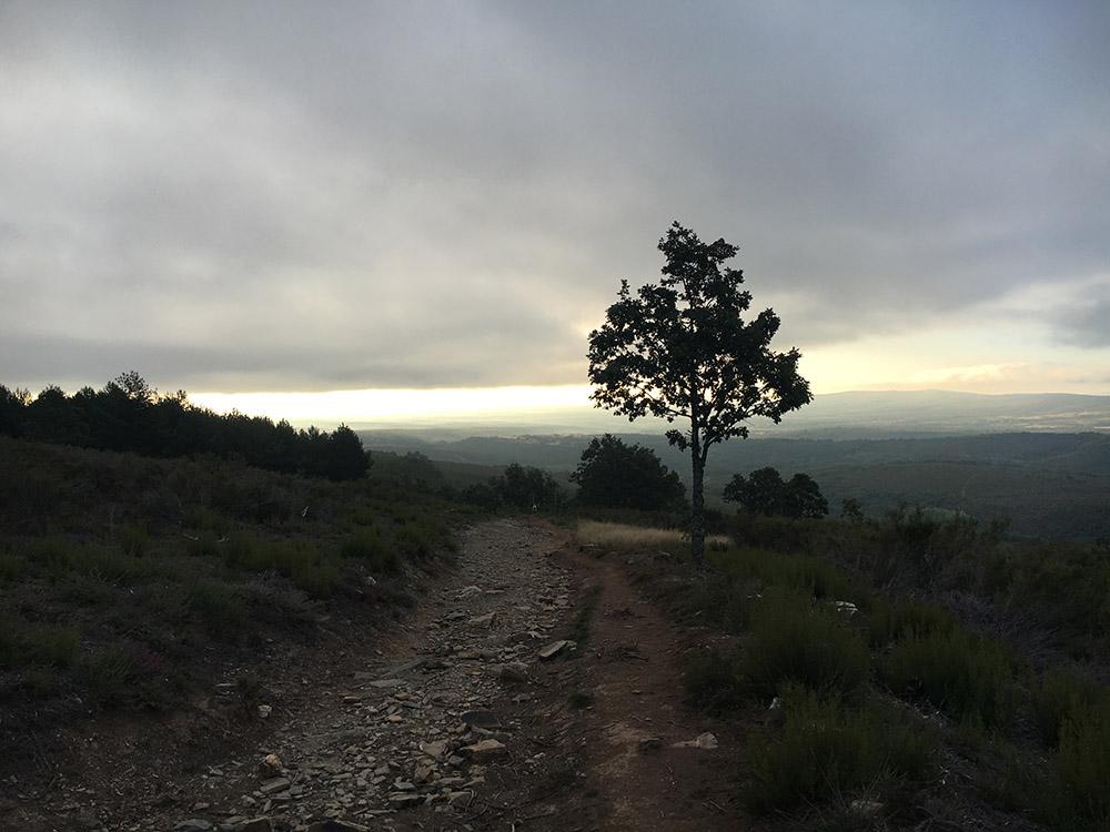 Camino26Sep1.jpg