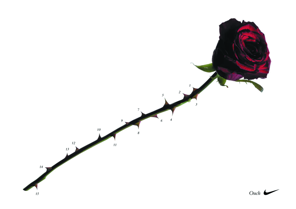 Rugby Rose.jpg
