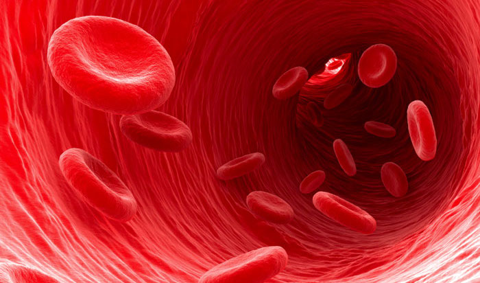 red-blood-cells-1.jpg