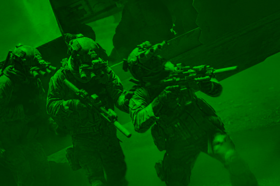 seal16_green.jpg