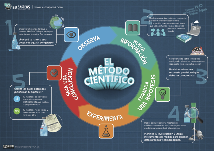 Infografía del Método Científico