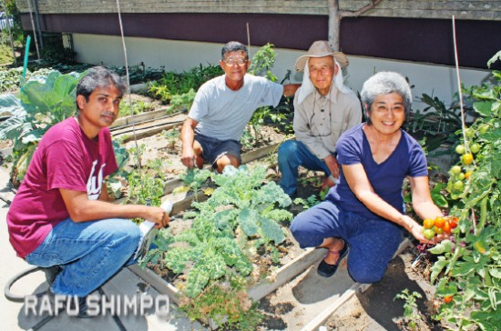 From left: Sunil Vernekar, Zenshuji Obon chair, Ben Takagi, Kunio Tsuneyoshi and Amy Honjiyo in the garden at Zenshuji Soto Mission. All organic materials from the kitchen are composted and used to nourish the soil. Extra bins will be utilized to gather organic waste from the Obon Carnival to be held this weekend. (GWEN MURANAKA/Rafu Shimpo)