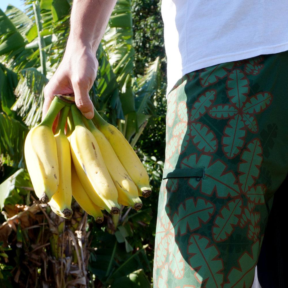 """""""Banana Leaf"""" Boardshorts"""