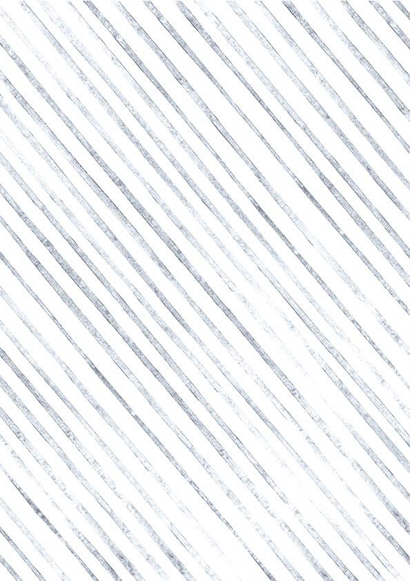 FPPLC0137