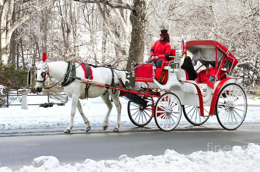 central-park-carriage-in-snow-regina-geoghan.jpg