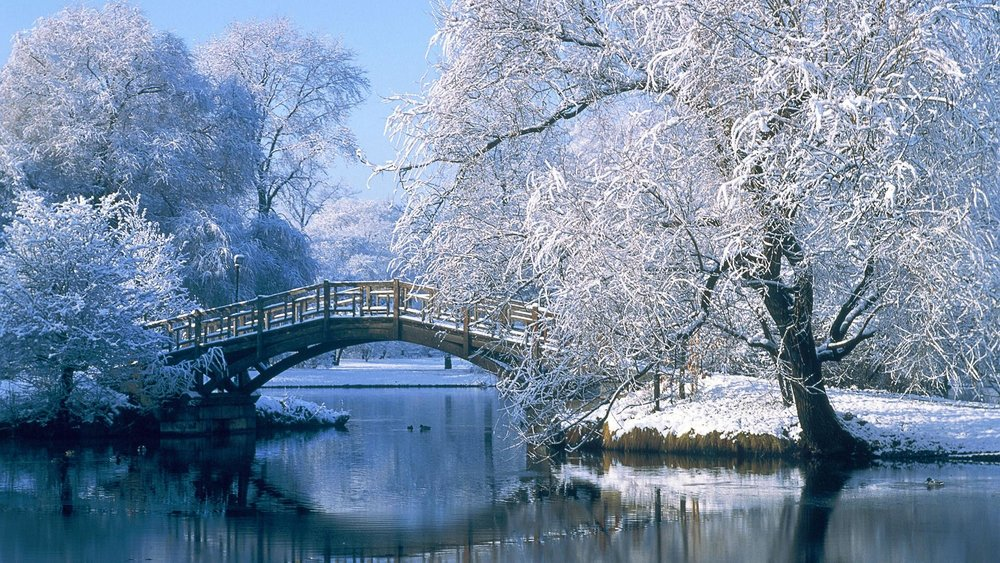 winter-in-central-park-wallpaper-1.jpg
