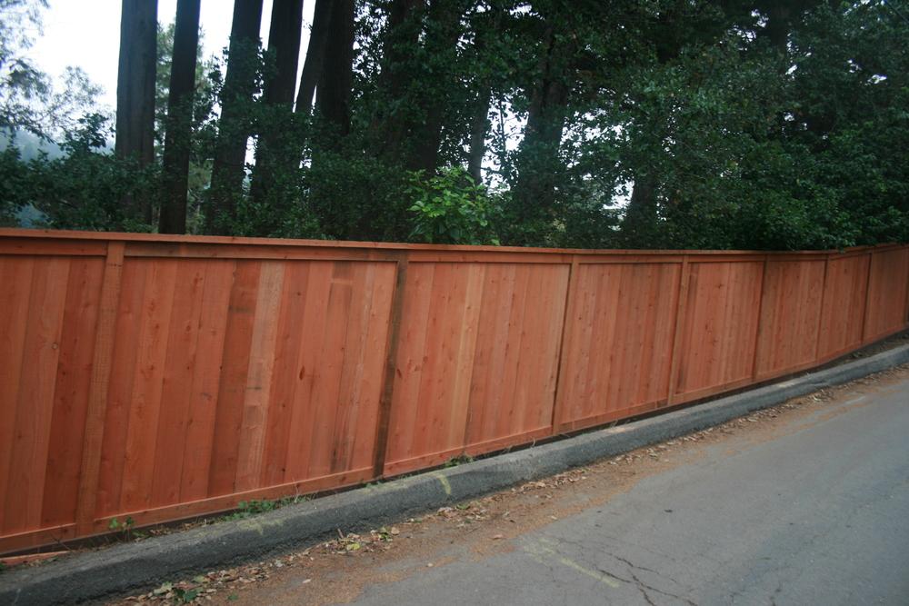 Parmentor Fence 2 004.JPG