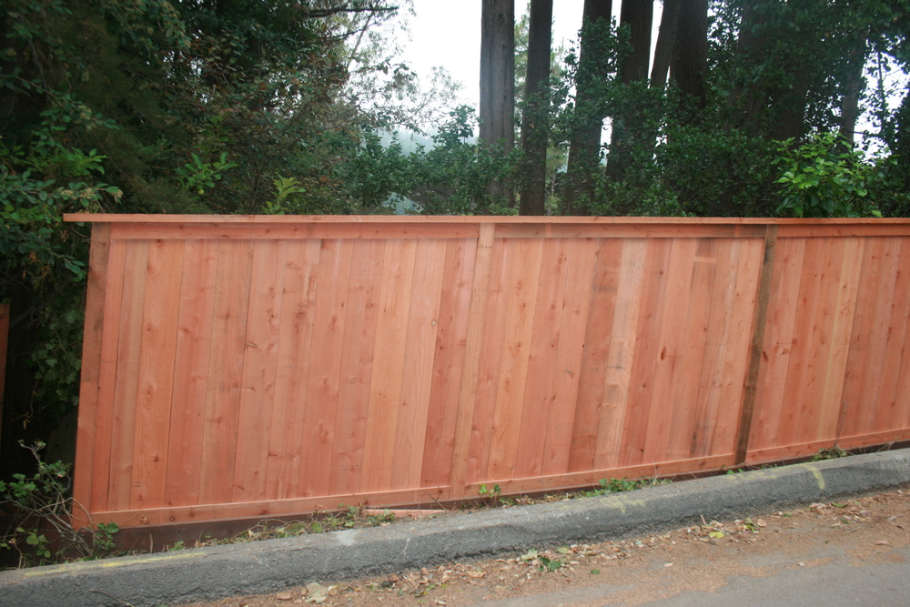 Parmentor Fence 2 003.JPG