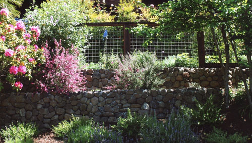 64_larkspur stone wall with hog wire grid landscape fence.jpg