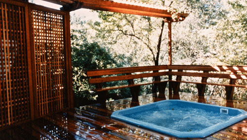 25_larkspur spa and outdoor living area.jpg