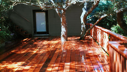 27a_fairfax hillside deck with trees through deck.jpg