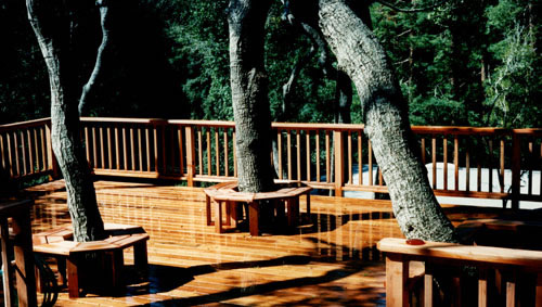 27_redwood deck and benches for tree loving homeowners.jpg
