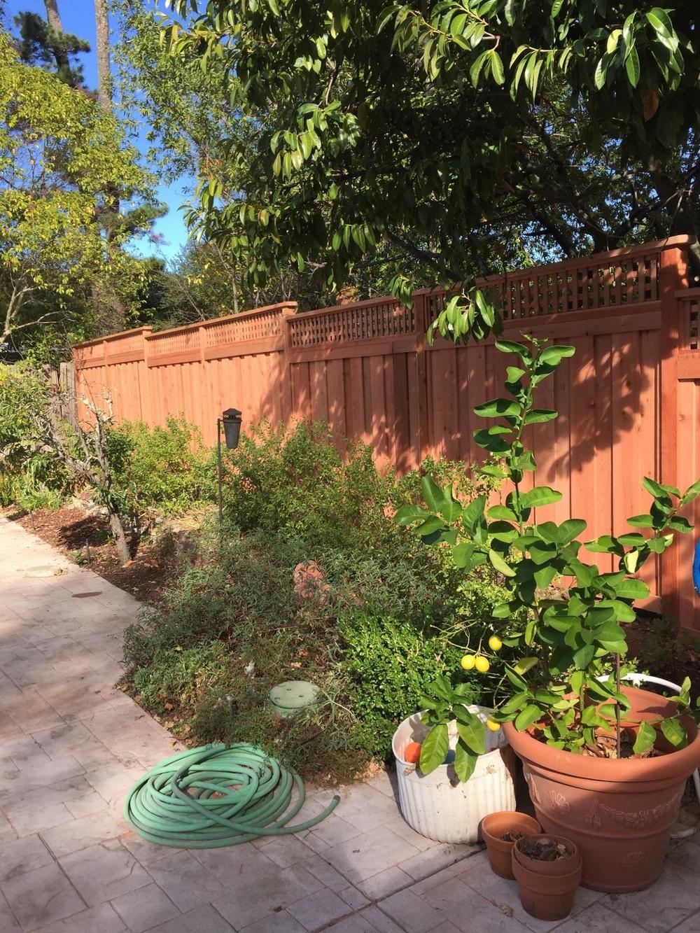 FSC Redwood Fence Marin County 3.jpg