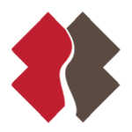 Team Rubicon Transparent.png