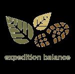 exp+balance.png