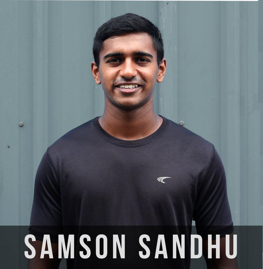 SamsonMOSFinal.jpg