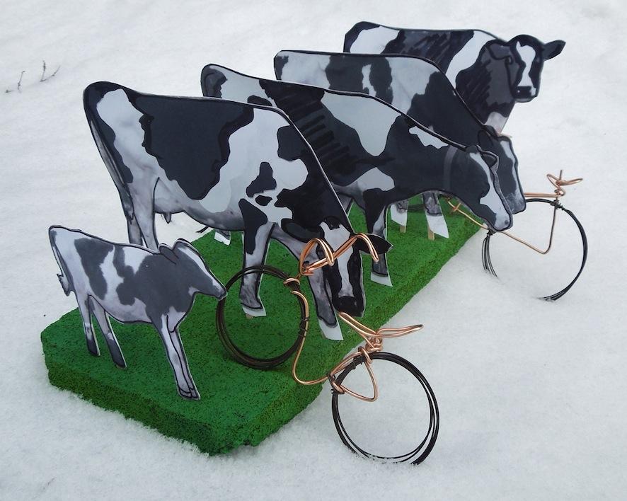 1 cows.JPG
