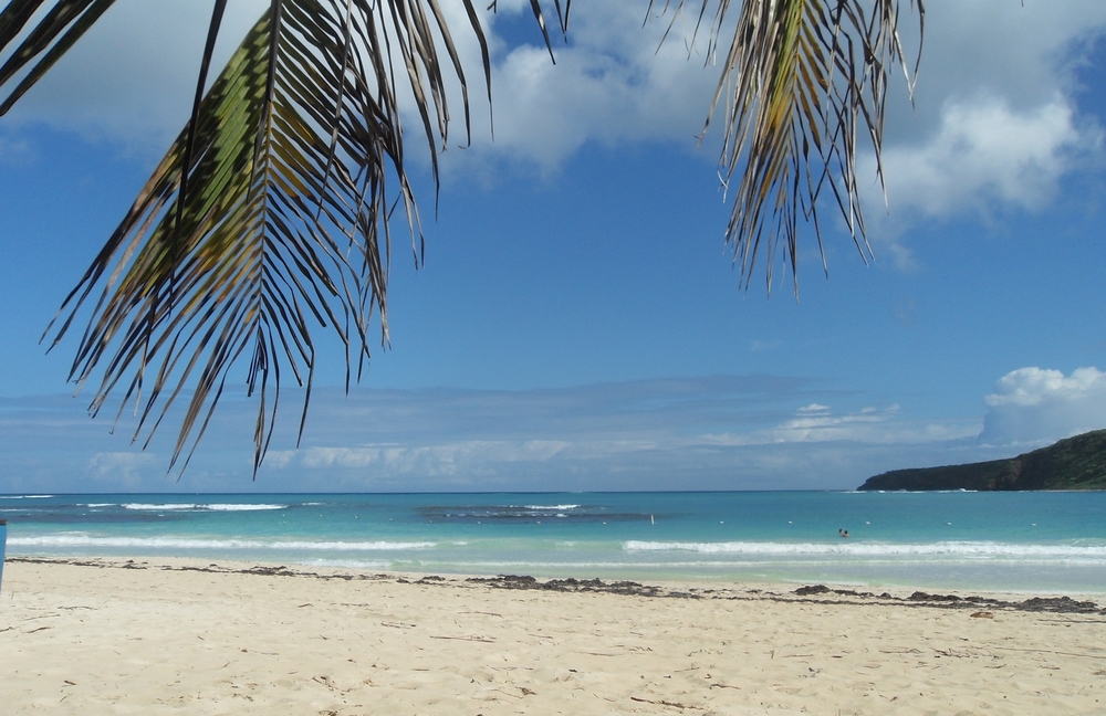 Beautiful Flamenco Beach and Other Attractions are Just a Few Minutes Away    Discover Puerto Rico Here