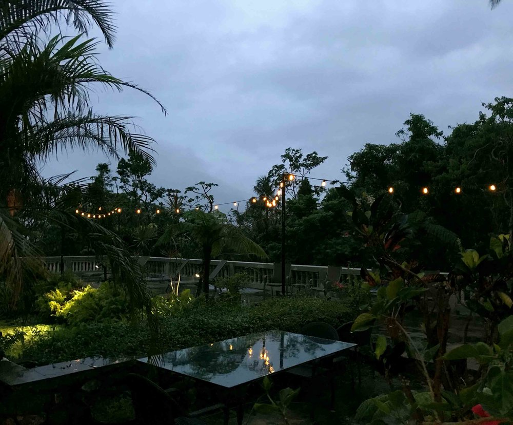 evening-at-Rainforest-Inn.jpg