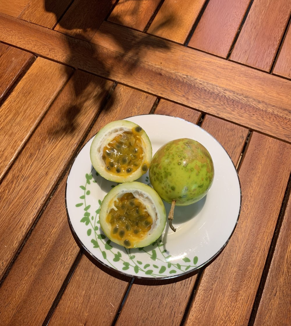 To eat the parcha (passion fruit), you just scoop out the insides!