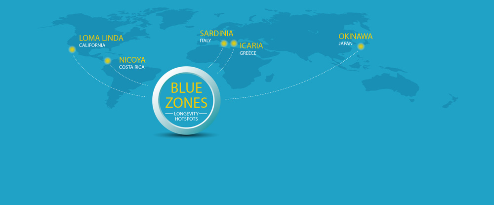 Bluwzones graphics.jpg