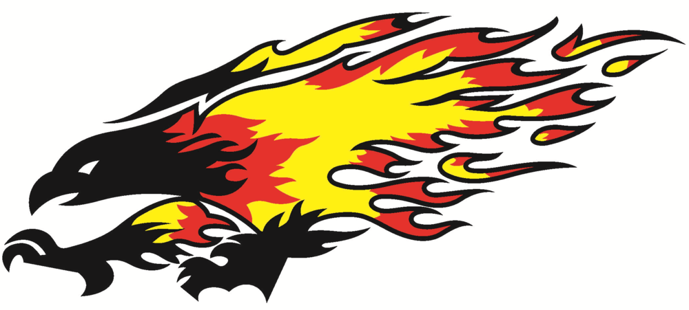 Firebird-vectored.jpg