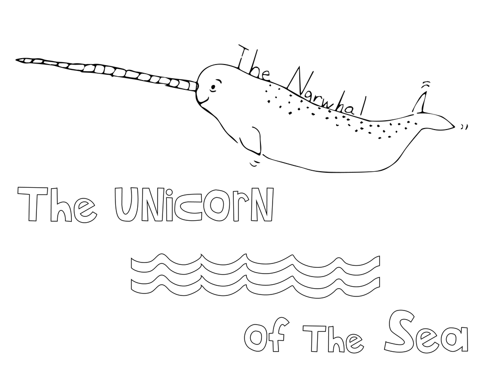 narwhal colouring sheet