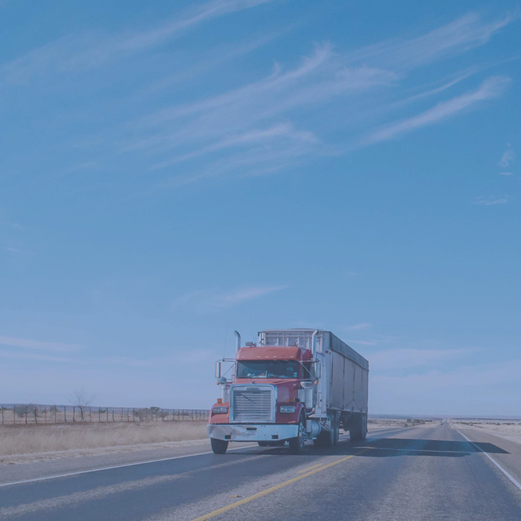 Blue Horizon Truck Driving School -