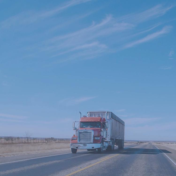 Blue Horizon Truck Driving School -