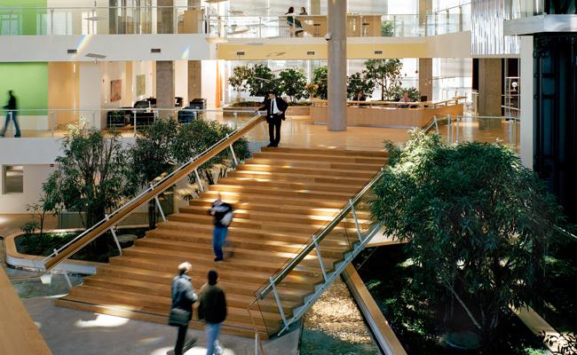 Biophilic stairs foyer.jpg