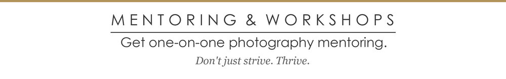 Wilmington, NC Photography Mentoring and Workshops