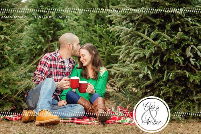 Christmas photos wilmington nc tree farm