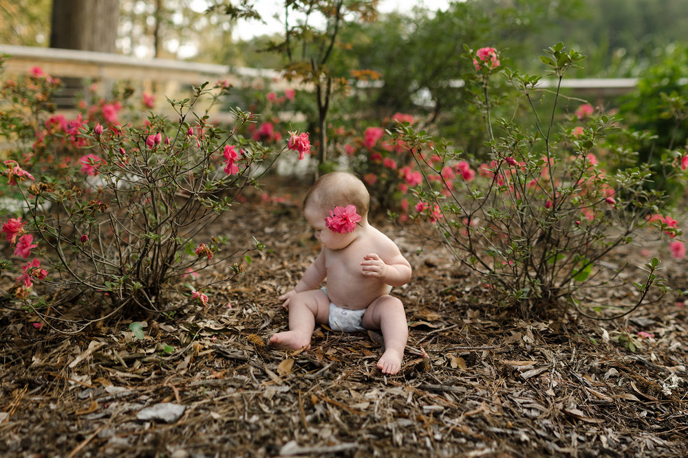 Cynthia LaVigne- Family Session- Websized & Watermarked-53.jpg6 month old sitter photos in rose bed garden Wilmington, NC
