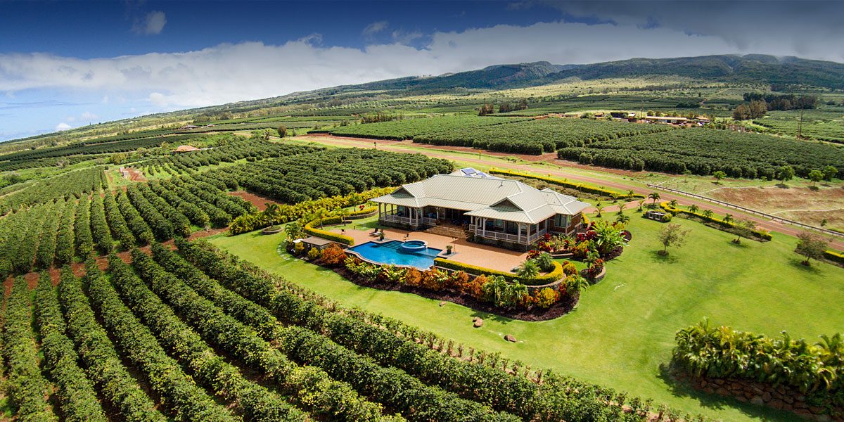 ka anapali coffee farms real estate lots in maui hawaii