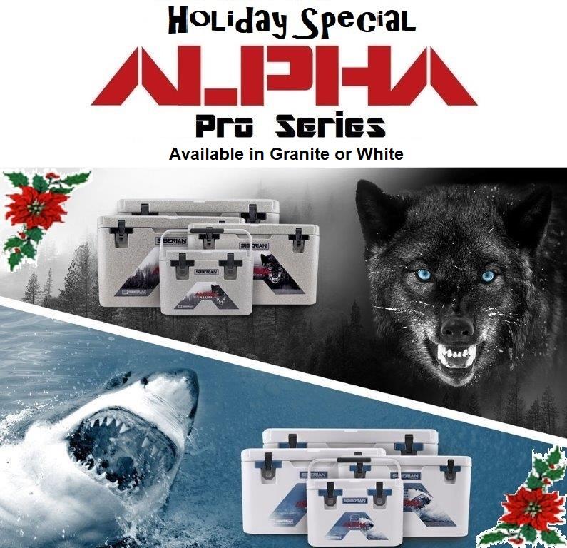 Alpha Series Christmas Ad G&WGlenn110617.jpg