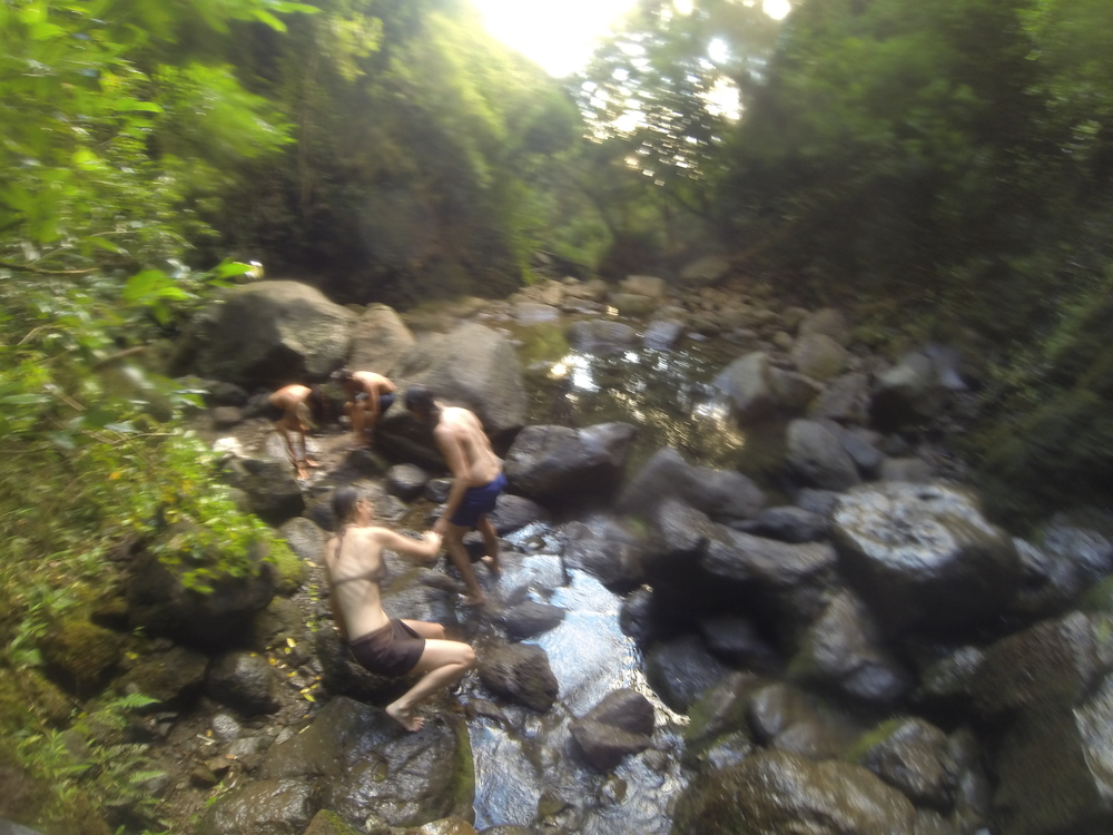 TravelandBloomLuluMahu_01.JPG