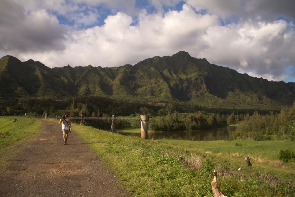 TravelandBloomLuluMahu_17.png
