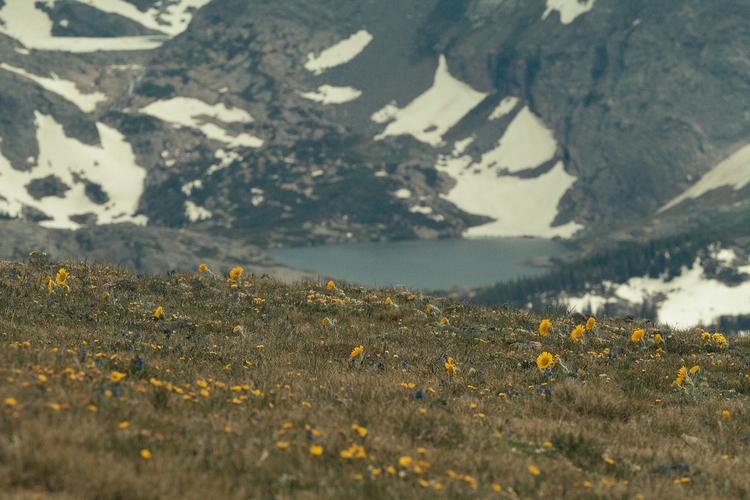 RhodesWeddingCo_Blog_Colorado_28.jpg