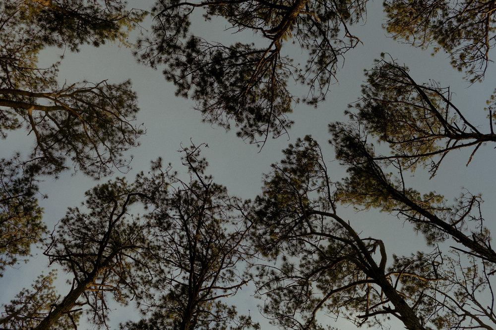 Jessy-Easton-Outer-Banks-North-Carolina-8281.jpg
