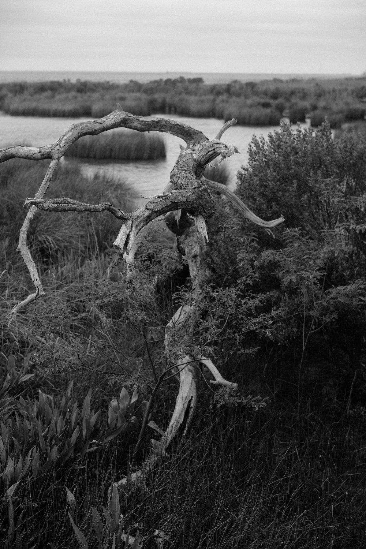 Jessy-Easton-Outer-Banks-North-Carolina-9170.jpg