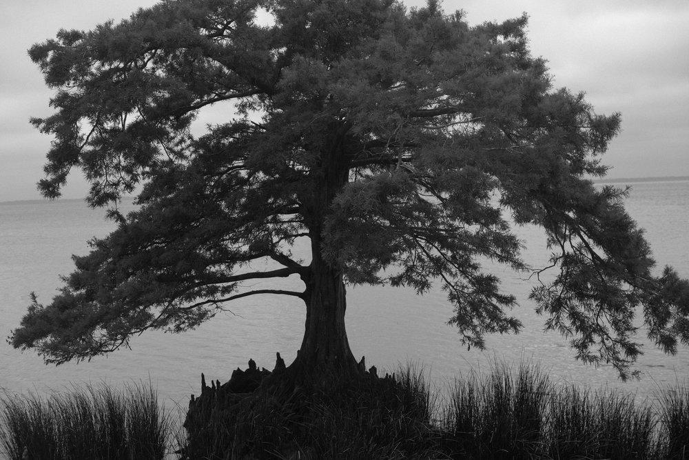 Jessy-Easton-Outer-Banks-North-Carolina-9014.jpg