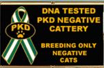 FIV/FeLV/PKD DNA neg