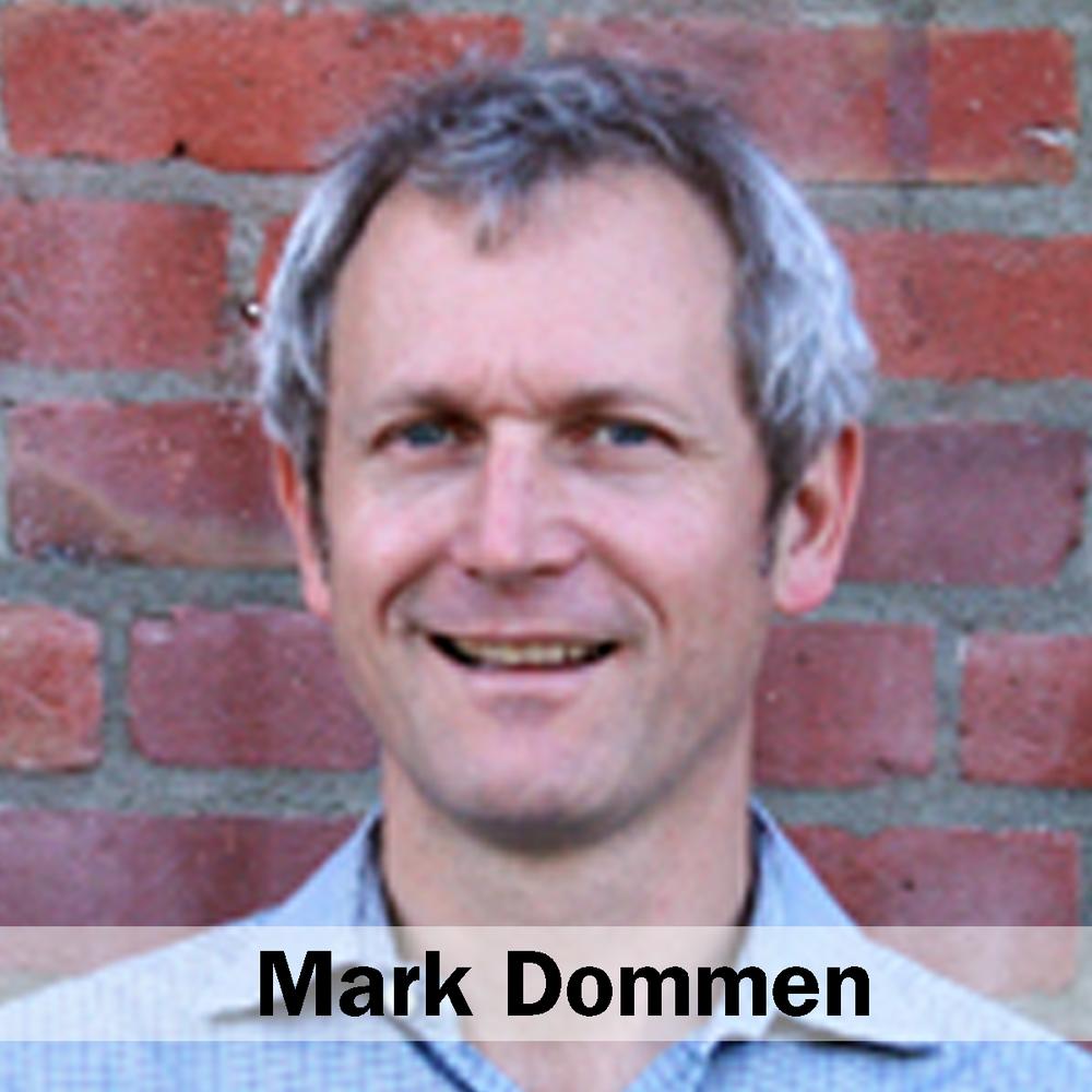 Dommen_Mark_Web.png