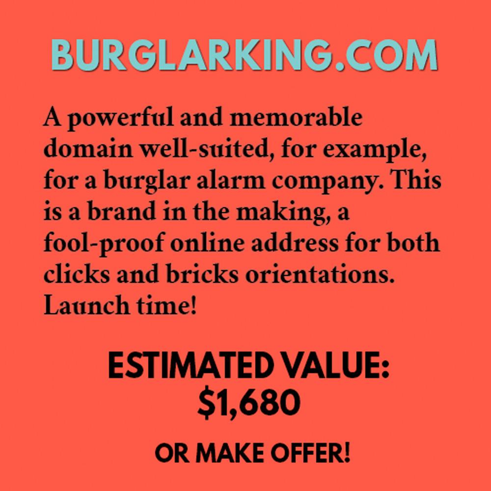 BURGLARKING.COM