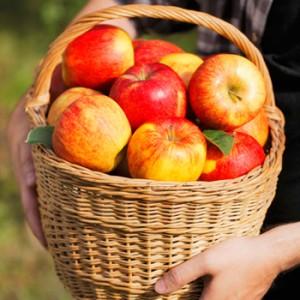 apples-300x300.jpg