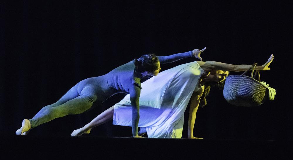 Mendocino Dance Project (28 of 47).jpg
