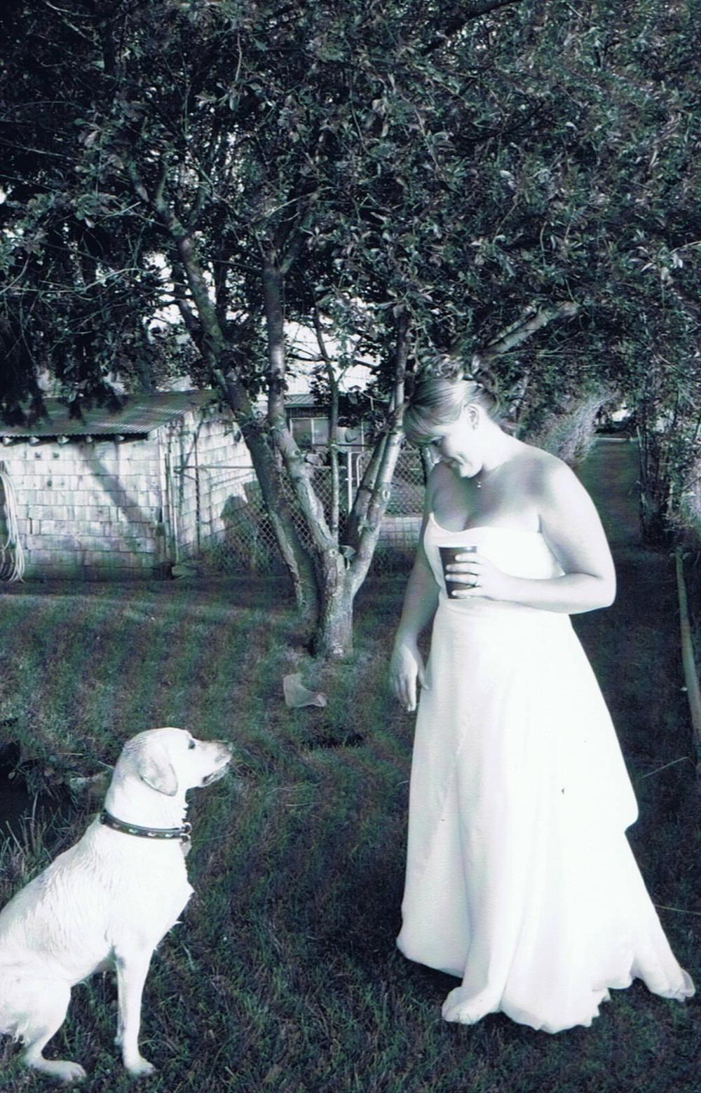 Ida Mae the official ring bearer on our wedding day July 22, 2006.