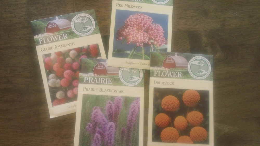 Honey bee perennial favorites that need a big head start in the growing season.